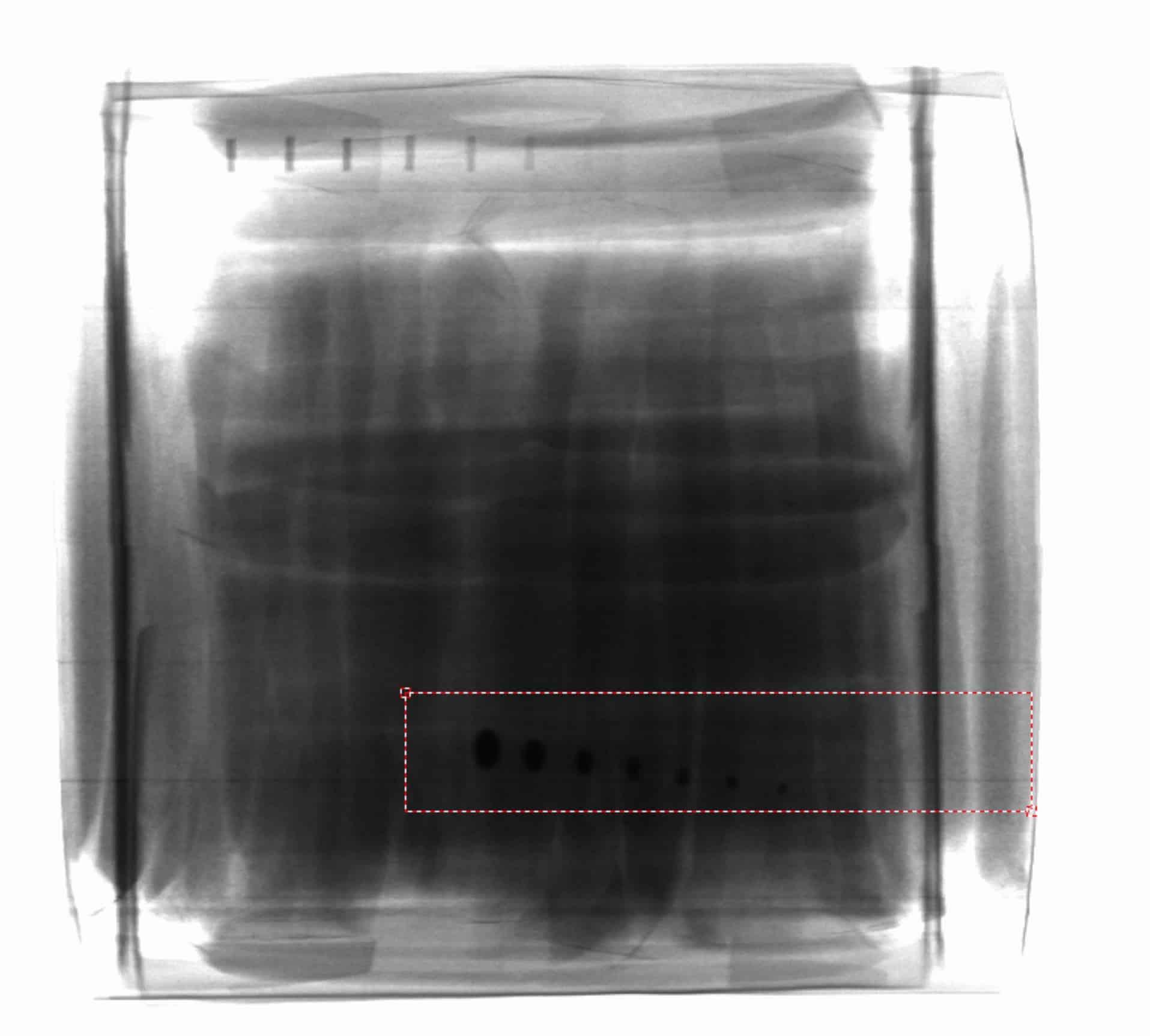 coffee x-ray