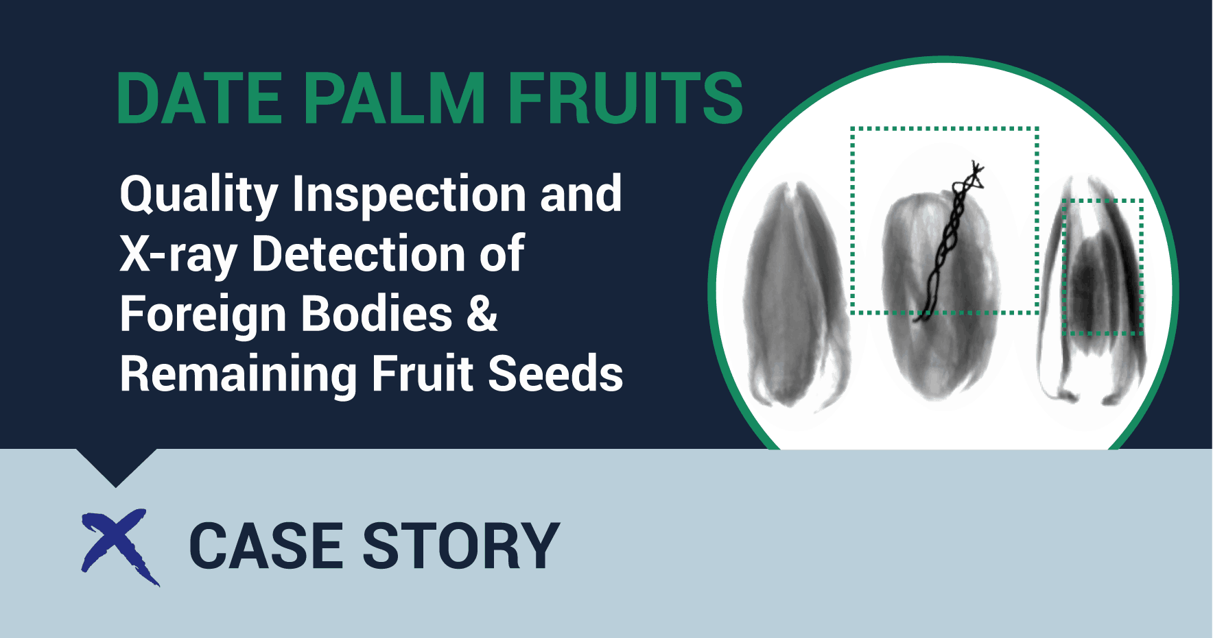 date palm fruit quality