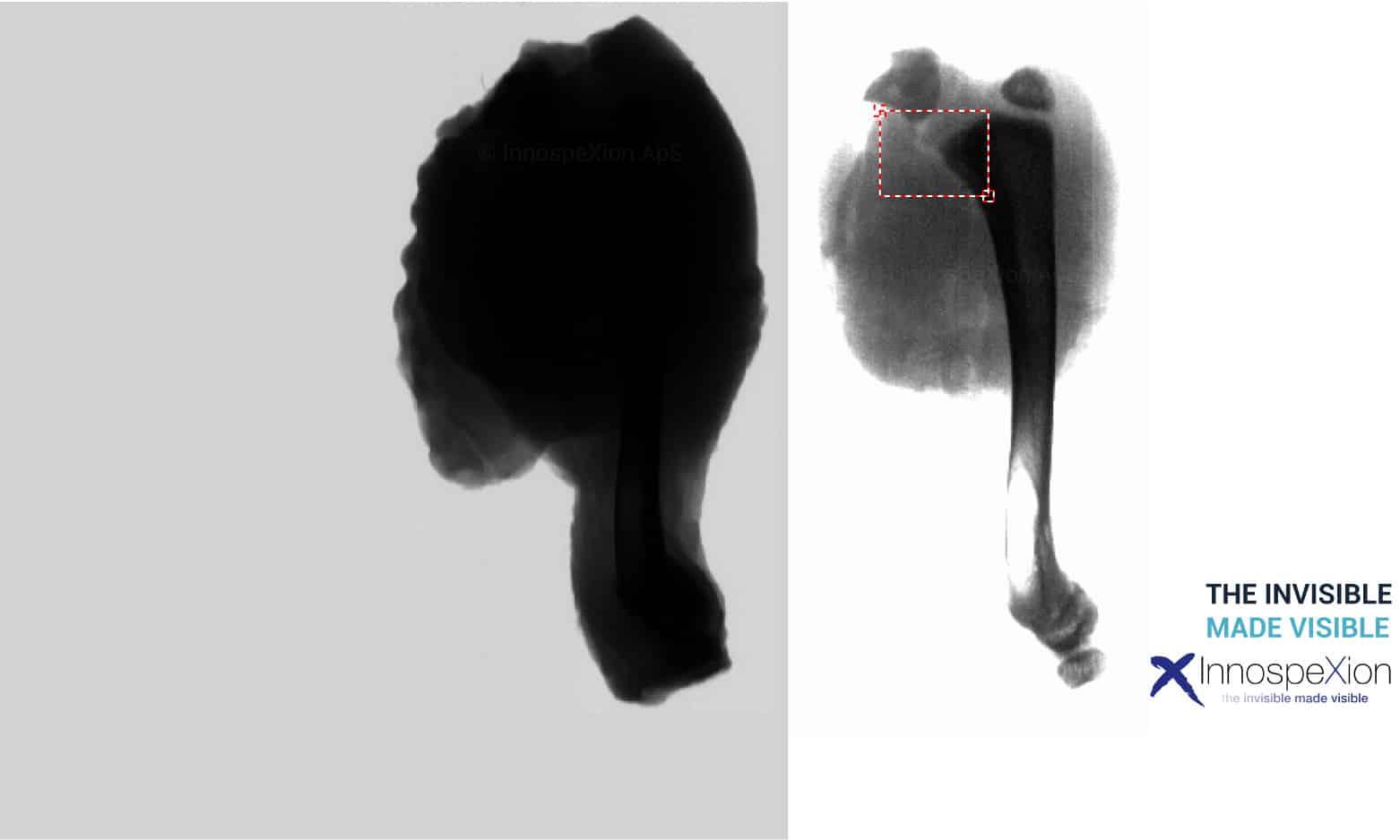 detecting chicken bones