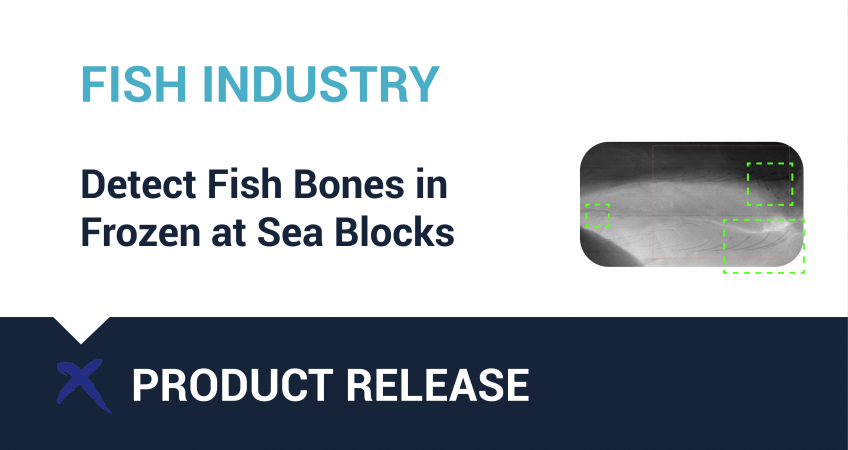 fish bone detection blocks